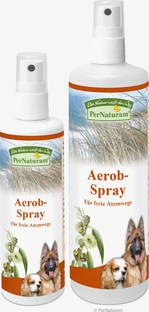 Aerob-Spray - PerNaturam Shop