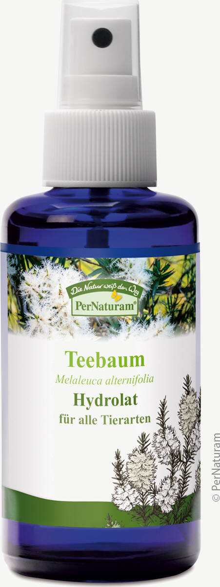 Teebaum Hydrolat (100 ml) - PerNaturam Shop