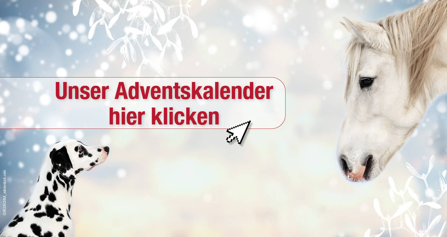 Adventskalender - PerNaturam Shop
