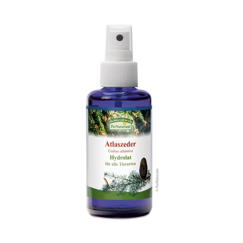 Atlaszeder Hydrolat (100 ml) - PerNaturam Shop