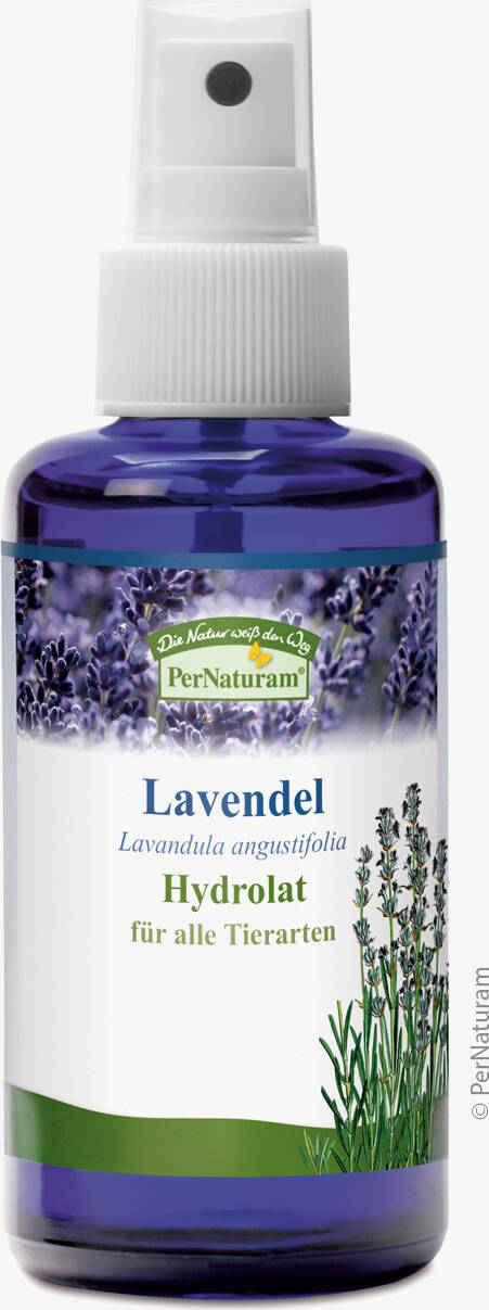 Lavendel Hydrolat (100 ml) - PerNaturam Shop