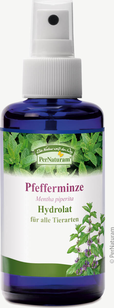 Pfefferminze Hydrolat (100 ml) - PerNaturam Shop