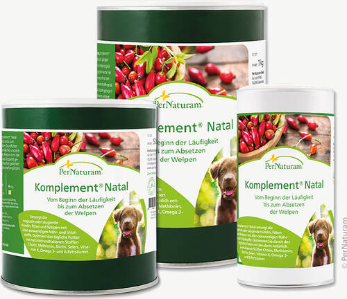 Komplement Natal- ehemals ProNatal - - PerNaturam Shop